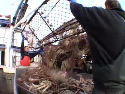 Deadliest Catch - Season 2 Episode 3 : On the Crab
