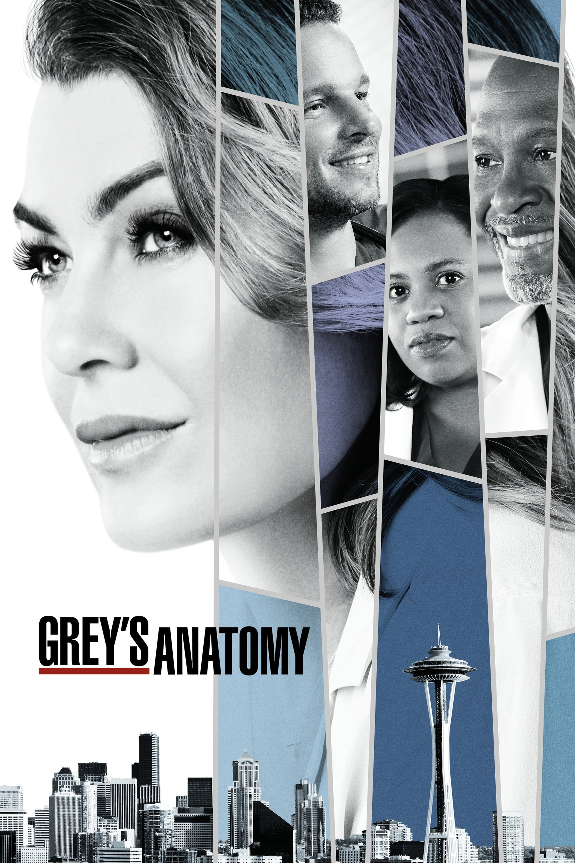 Grey's Anatomy – Todas as Temporadas Dublado / Legendado (2005)