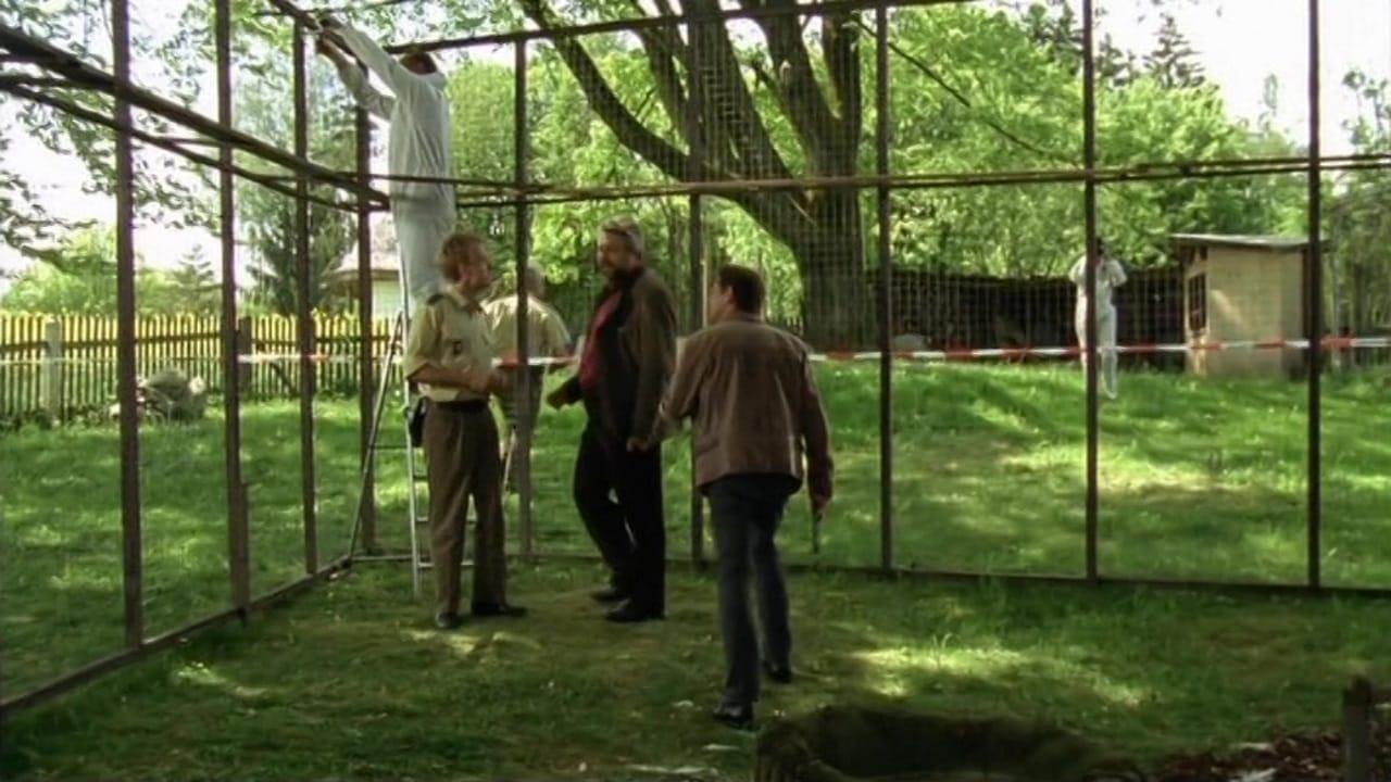 Die Rosenheim-Cops Season 12 :Episode 11  Unter Geiern