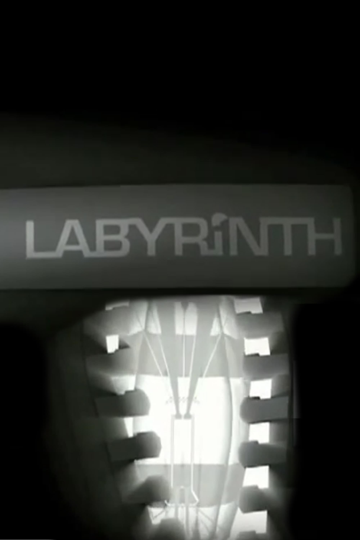 Labyrinth (2007)