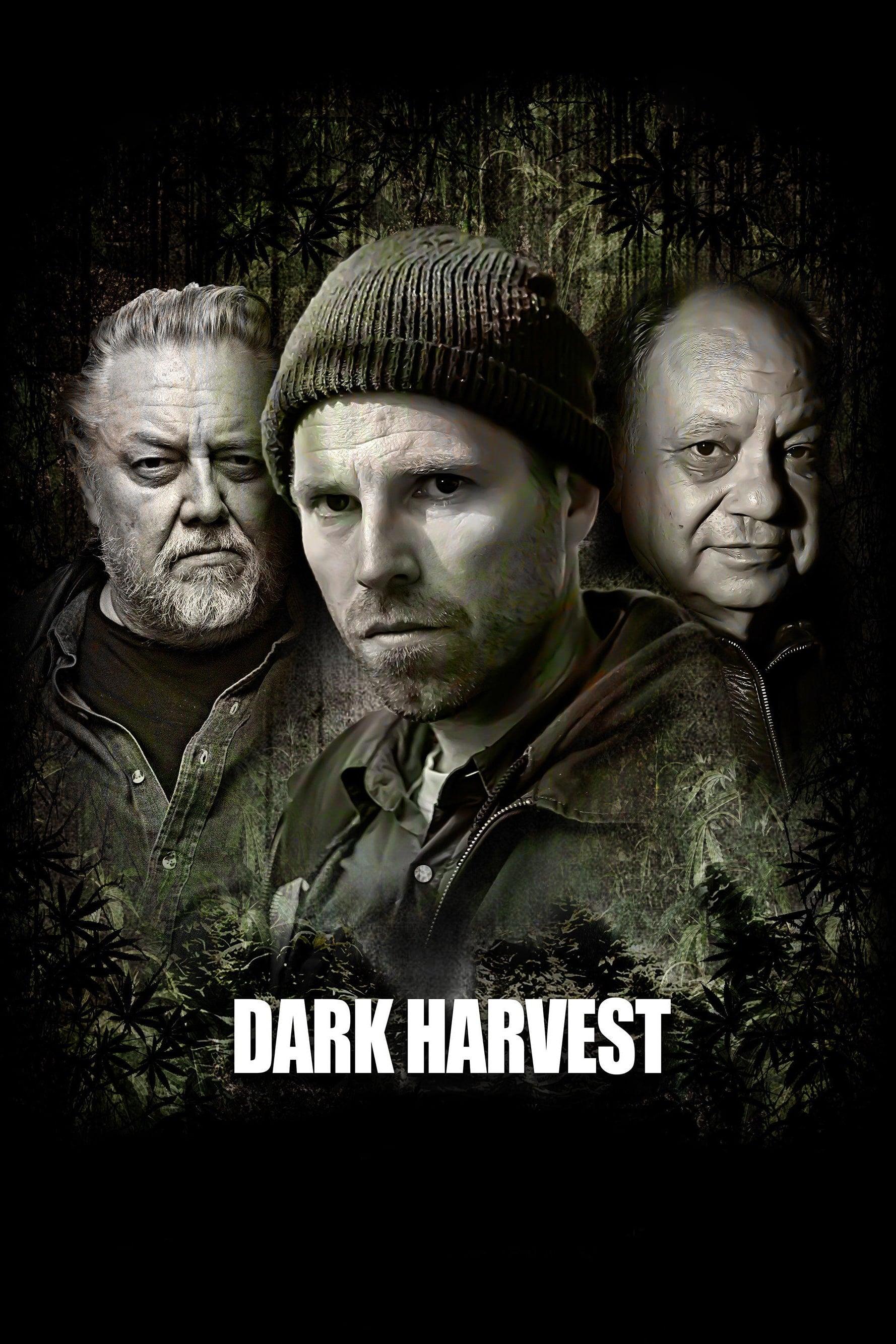 Ver Dark Harvest Online HD Español (2016)