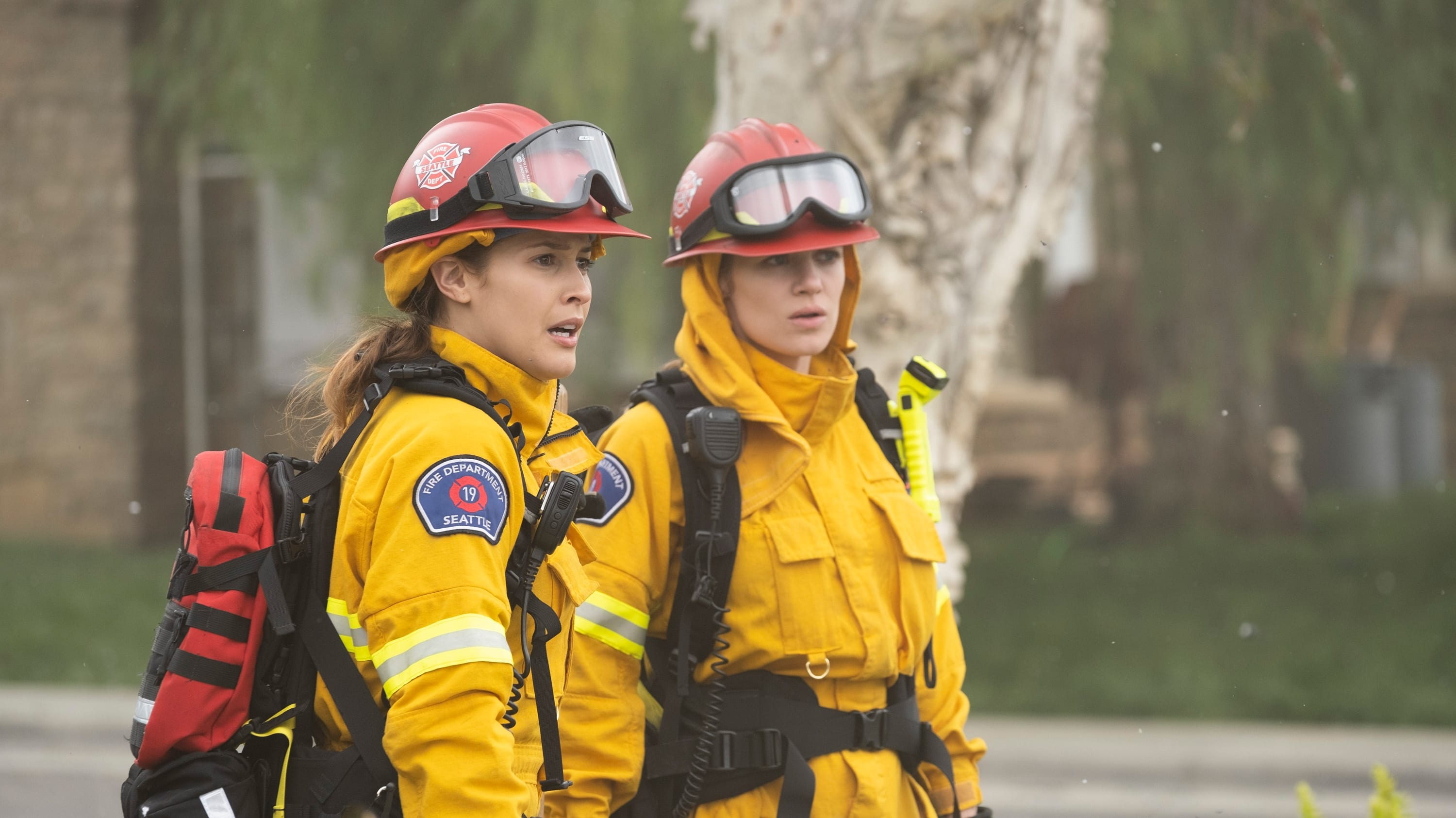 Station 19 Season 2 :Episode 17  Into the Wildfire