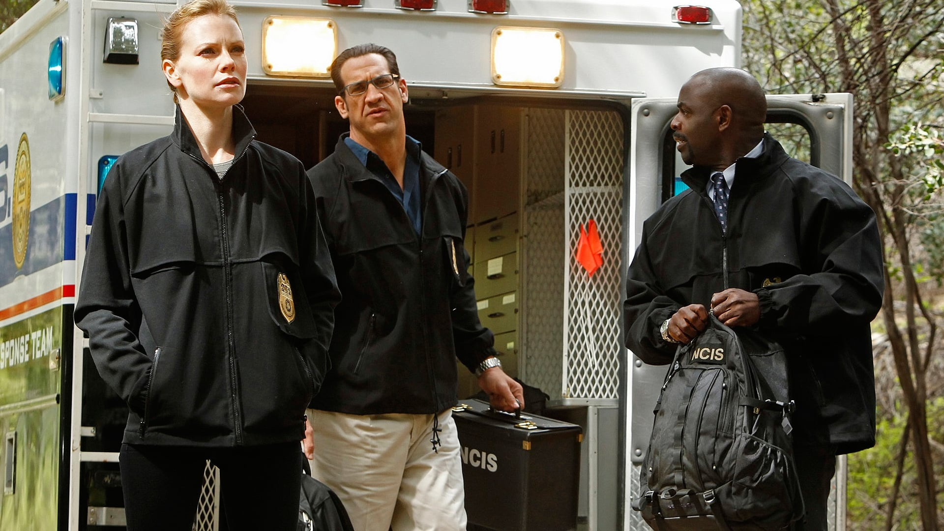 NCIS - Season 8 Episode 23 : Swan Song