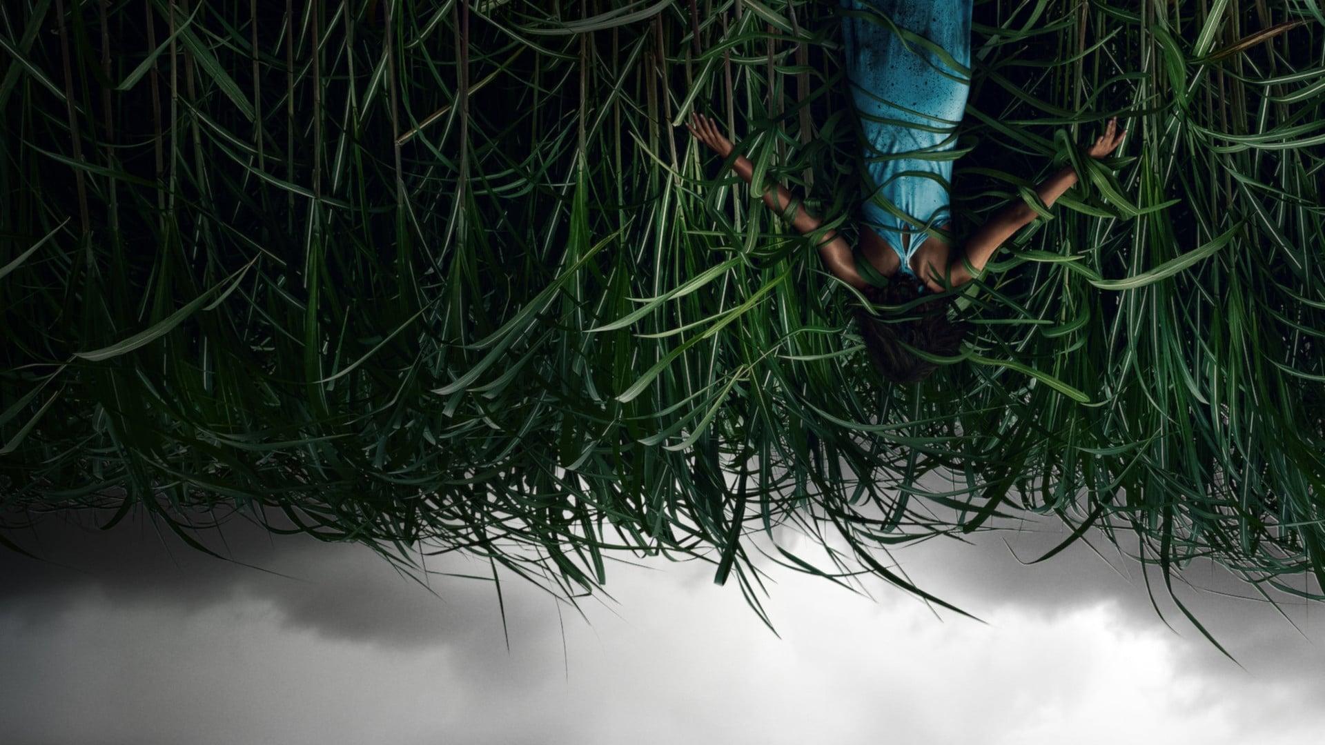 Đồng Cỏ Ăn Thịt Người - In the Tall Grass | Razorphim