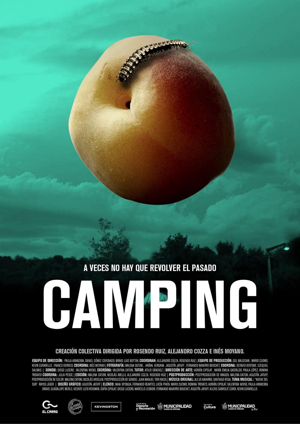 Camping (2017)