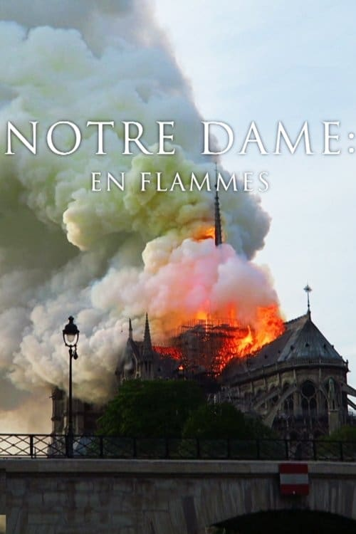 Pompiers de Paris : Sauver Notre-Dame (2019)