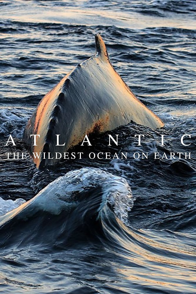 Atlantic: The Wildest Ocean on Earth (2015)