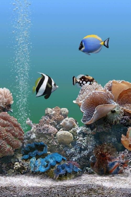 Coral Dreamscapes: An Exotic Aquarium