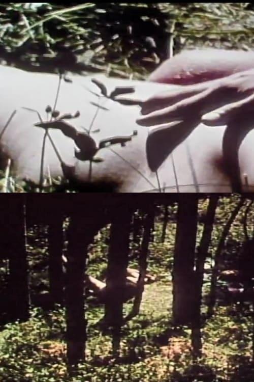 Short Films 1975 #9 (1975)
