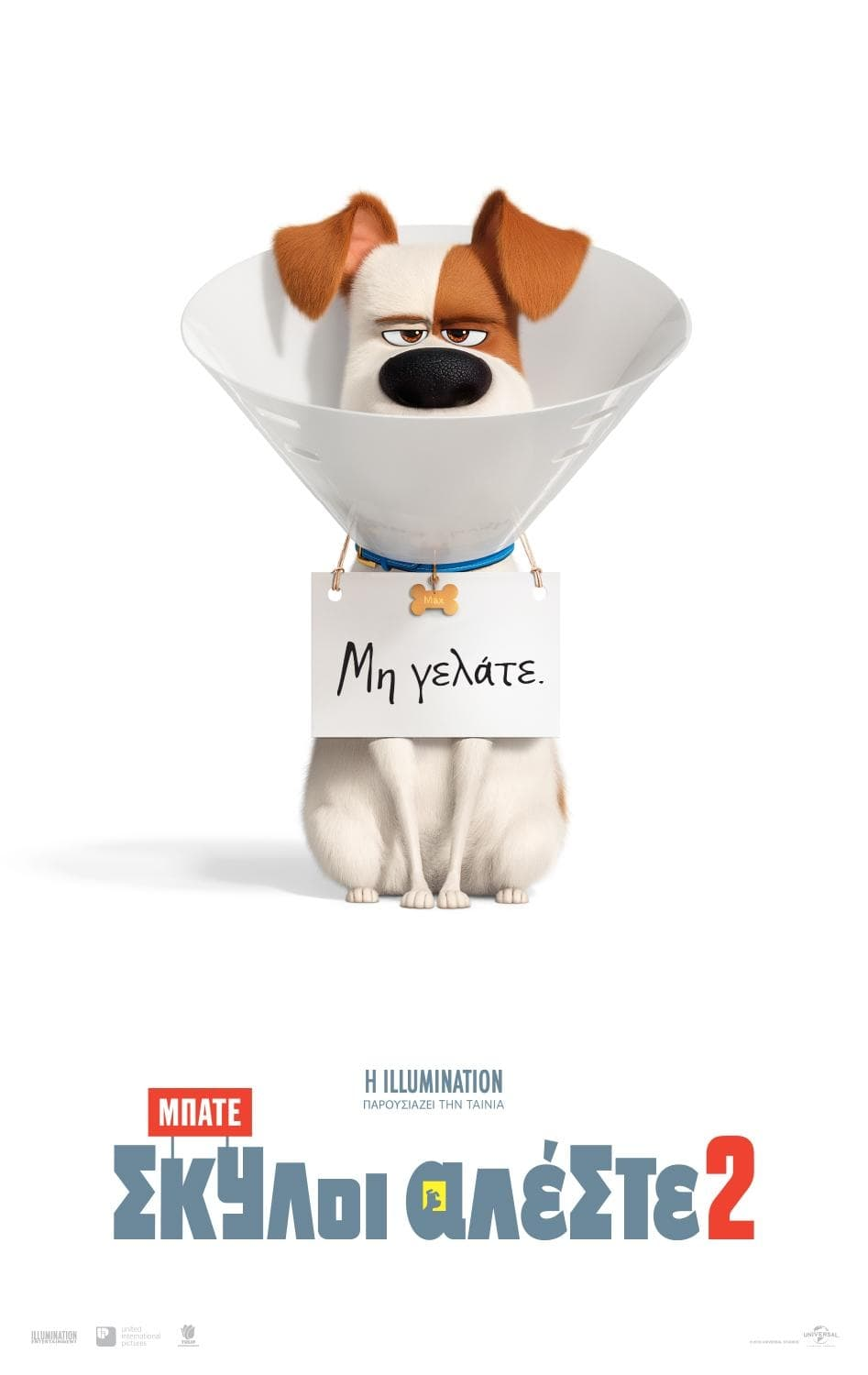 Poster and image movie Film The Secret Life of Pets 2 2019