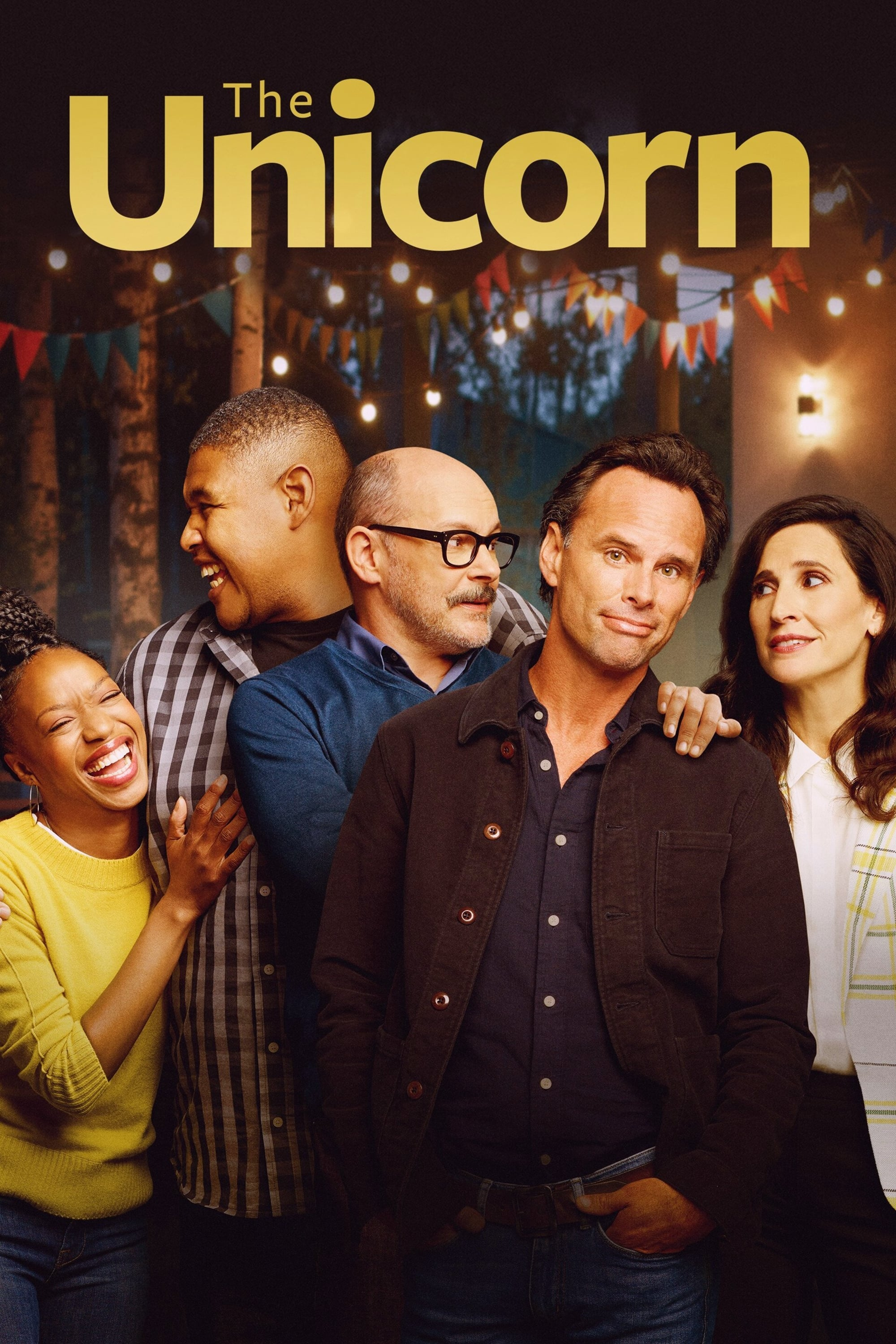 The Unicorn TV Shows About Sitcom