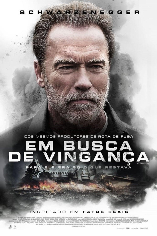 Em Busca de Vingança poster, capa, cartaz