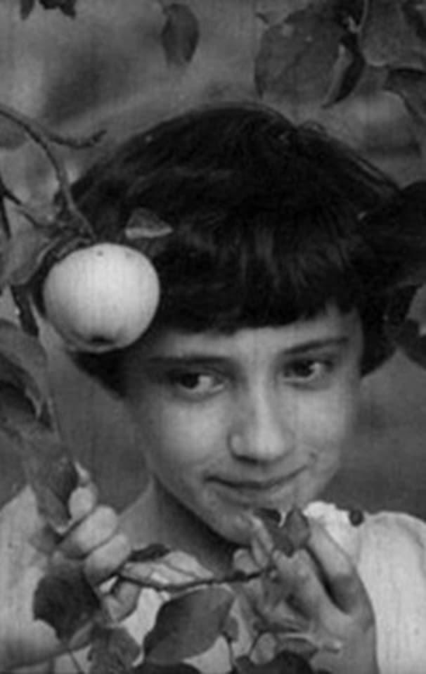 Ver Zlodiy Online HD Español (1969)