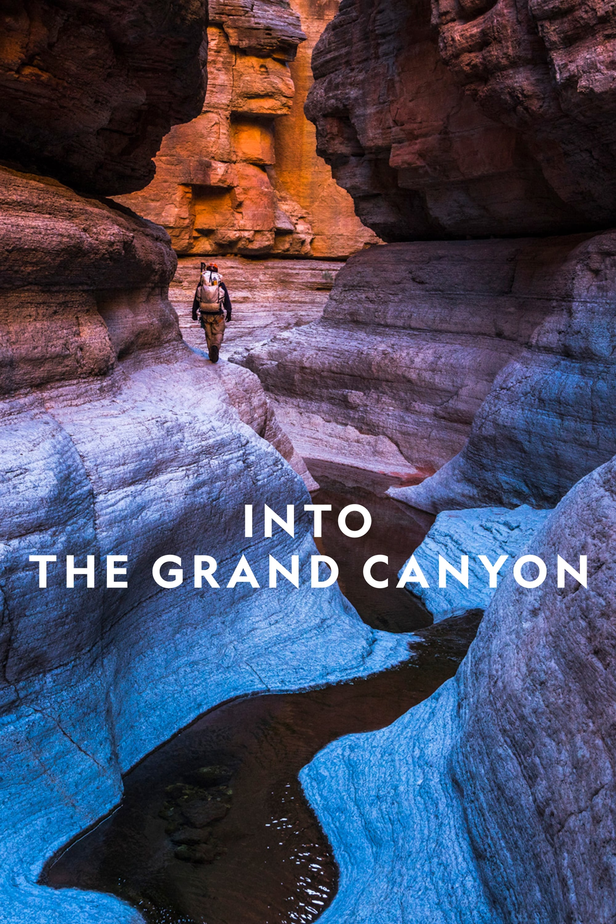 watch Into the Grand Canyon 2019 Stream online free