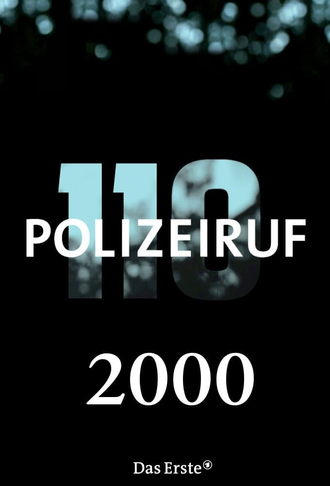 Polizeiruf 110 - Season 41 Season 29