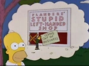 The Simpsons Season 3 :Episode 3  When Flanders Failed