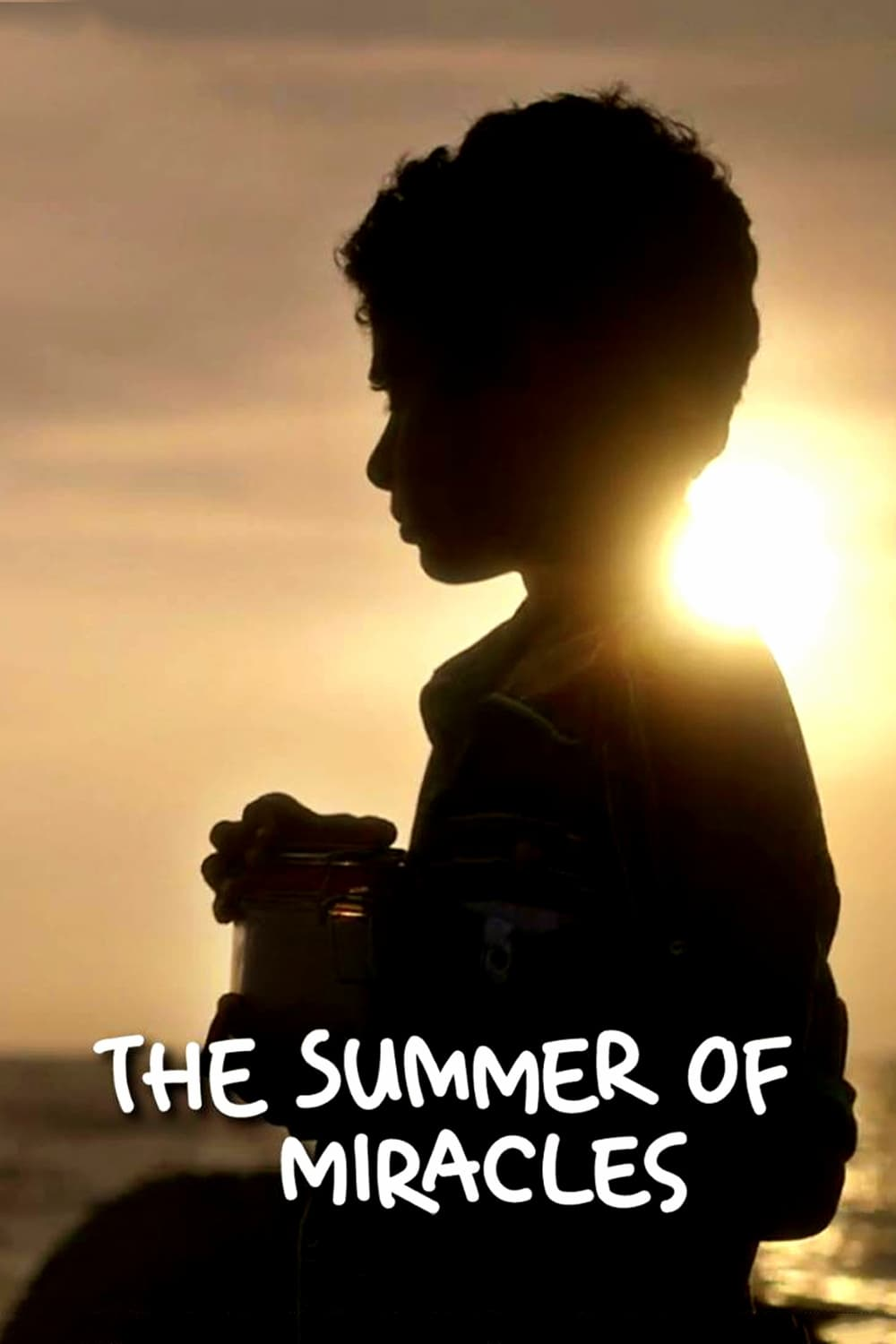 The Summer of Miracles (2017)