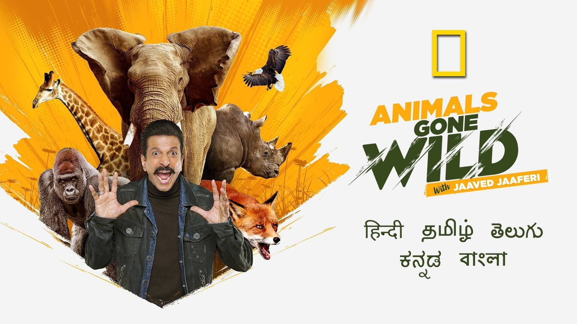 Animals Gone Wild With Jaaved Jaaferi S01 2021 NatGeo Web Series Hindi HS WebRip All Episodes 60mb 480p 200mb 720p 500mb 1080p