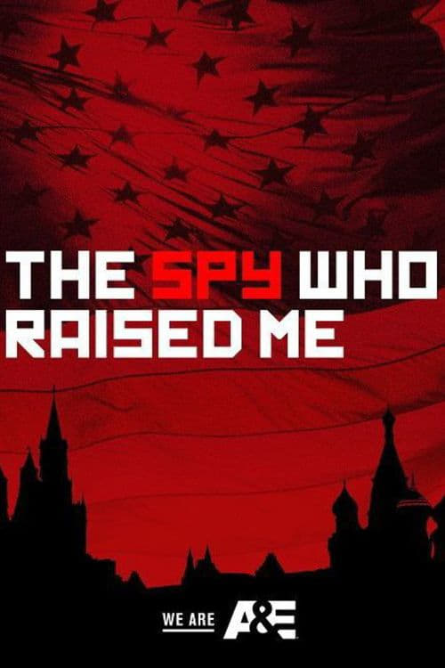 The Spy Who Raised Me (2018)