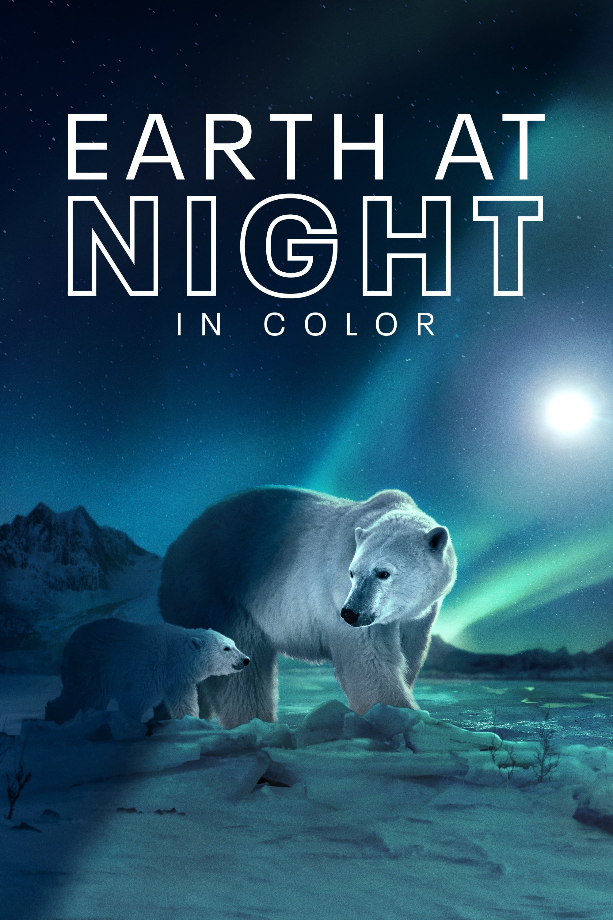 Earth at Night in Color TV Shows About Nature Documentary