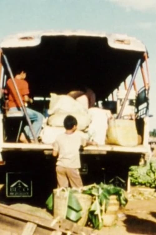 Fragments of a Journey to Laos (2008)