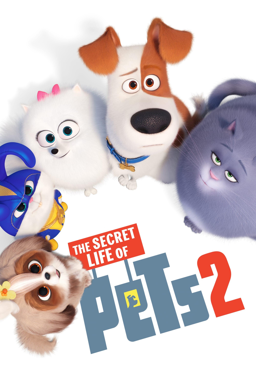 Film Pets 2