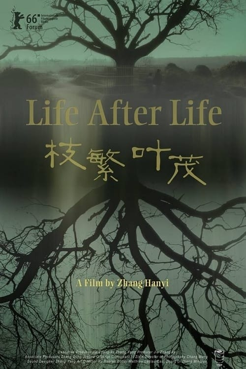 A Vida Após a Vida Legendado