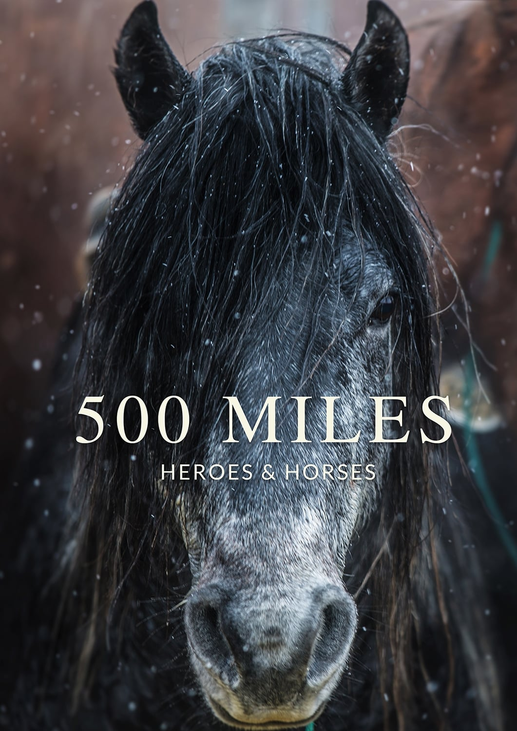 Ver 500 Miles – The Story of Ranchers and Horses Online HD Español ()