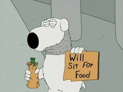 Family Guy Season 1 :Episode 7  Brian: Portrait of a Dog