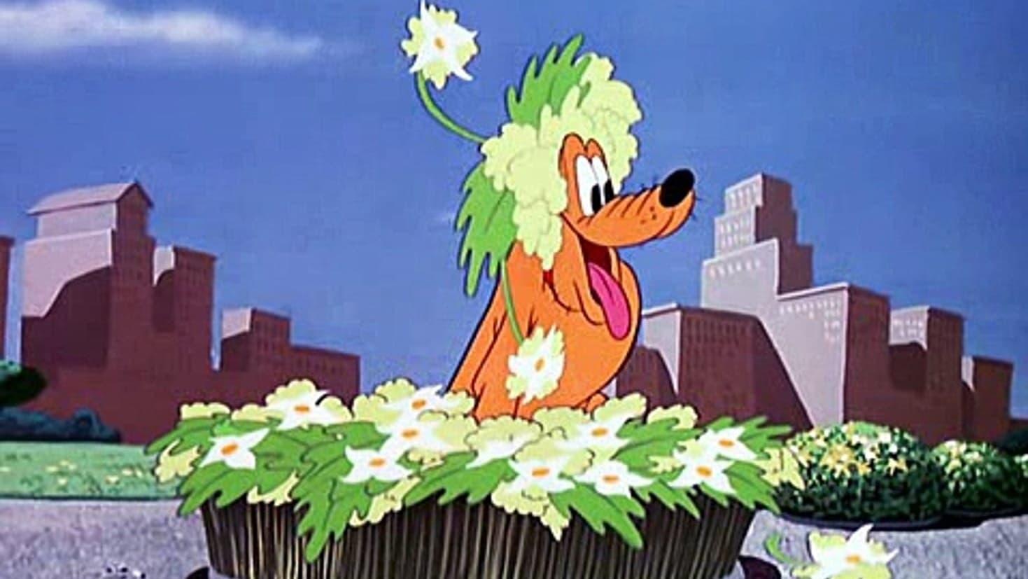 Pluto et le bourdon (1949)