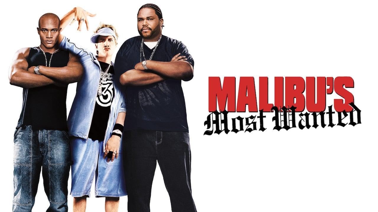 Le Rappeur de Malibu (2003)