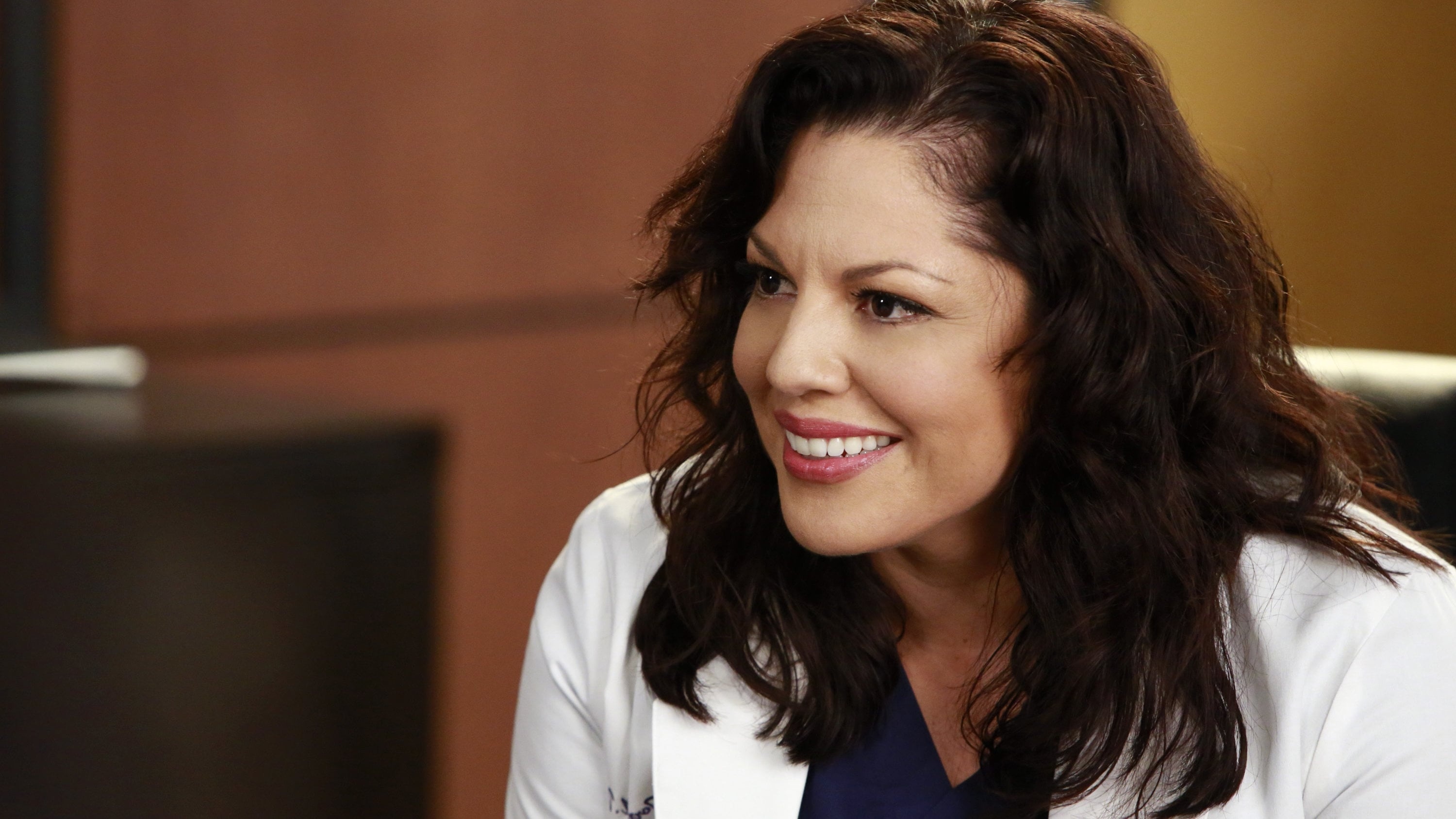 Grey's Anatomy Season 11 :Episode 16  Don't Dream It's Over