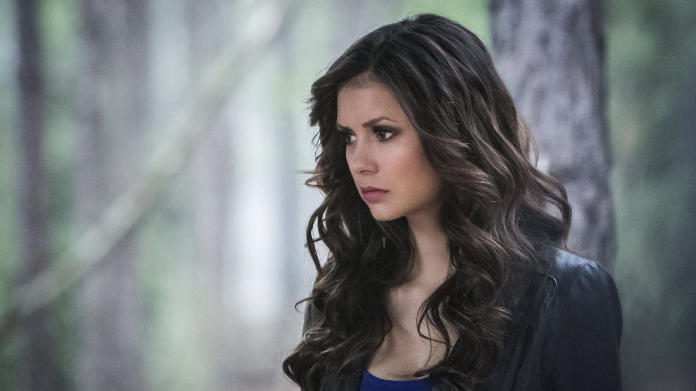 The Vampire Diaries Season 4 :Episode 22  The Walking Dead