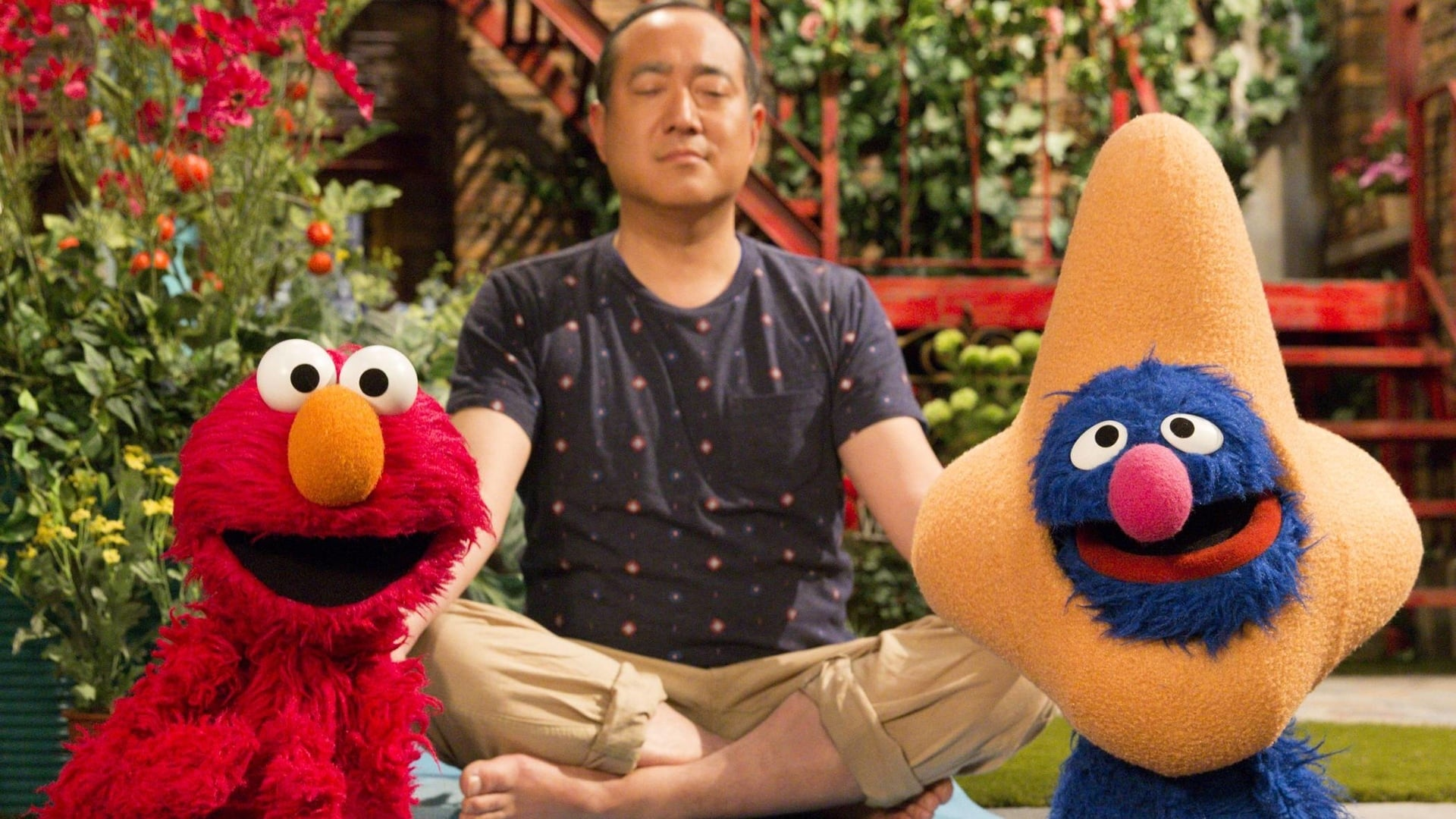 Sesame Street Season 46 :Episode 10  Say Thank You to Your Face Day