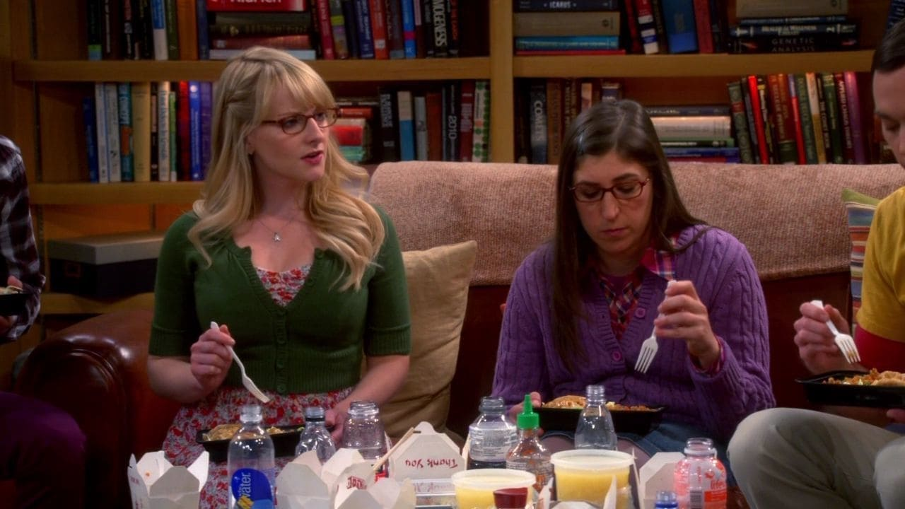 The Big Bang Theory Season 7 :Episode 17  The Friendship Turbulence