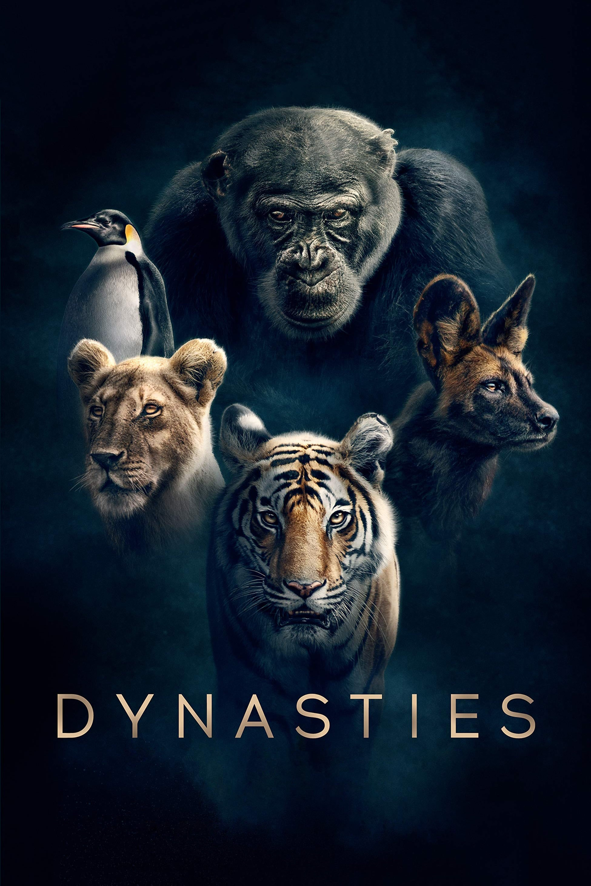 Dynasties TV Shows About Wildlife