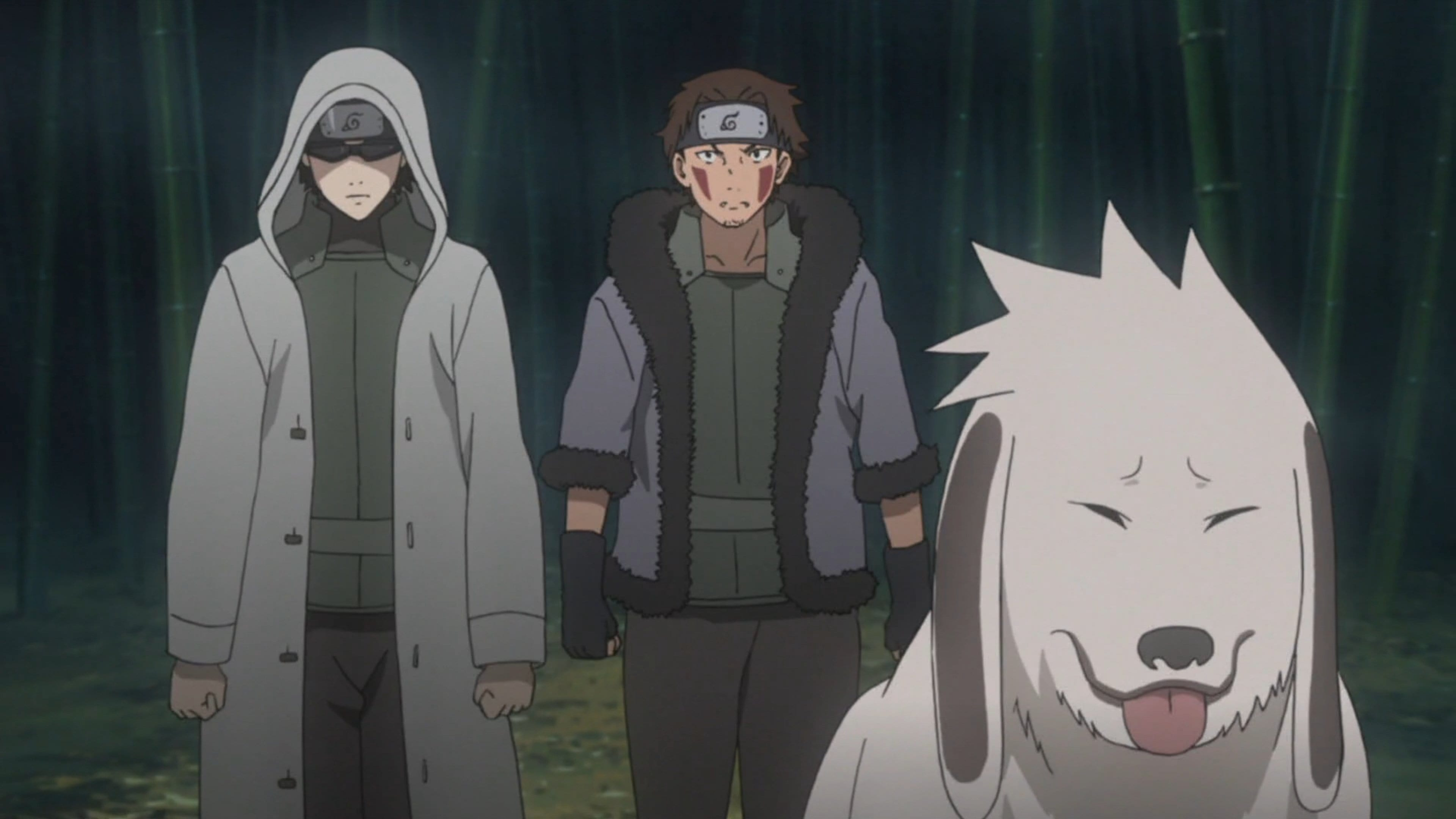 Naruto Shippūden Season 20 :Episode 498  Hidden Leaf Story, The Perfect Day for a Wedding, Part 5: The Last Mission