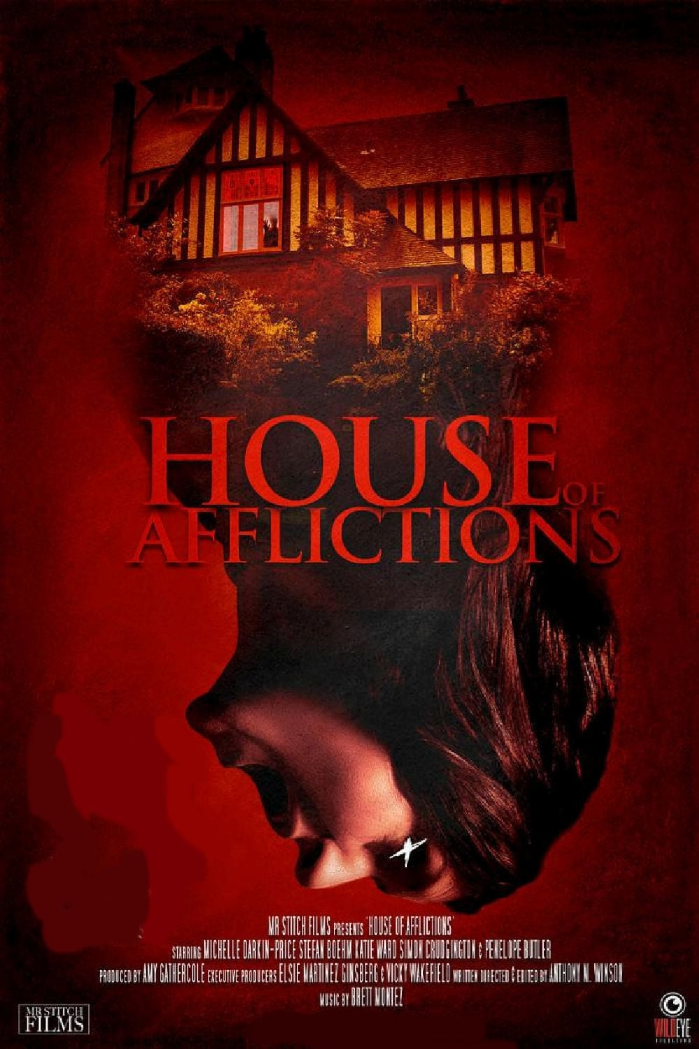 Ver House of Afflictions Online HD Español (2014)