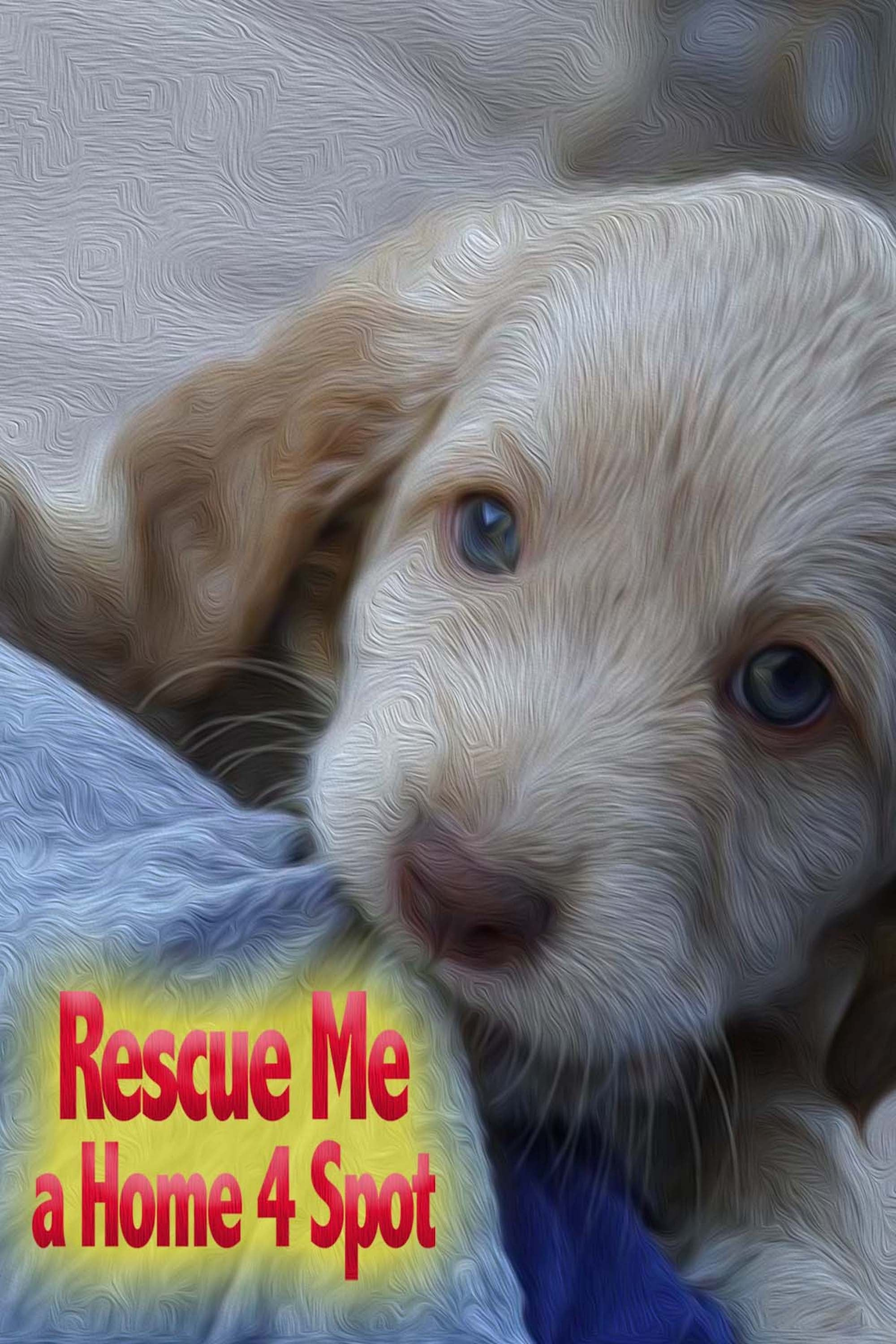 Rescue Me: A Home 4 Spot on FREECABLE TV