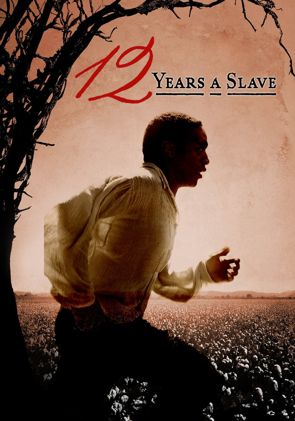 12 Years A Slave 2013 Posters The Movie Database Tmdb