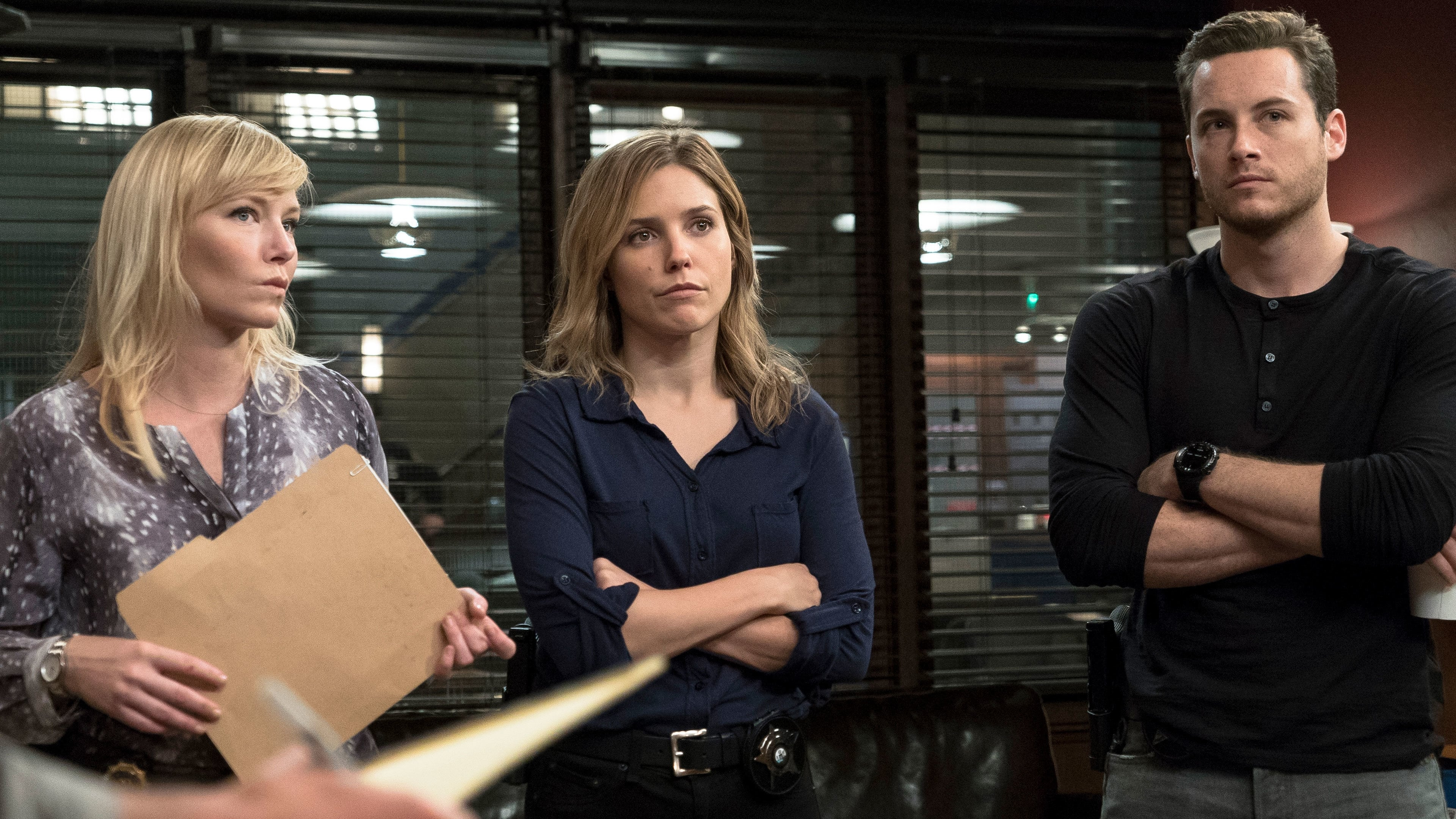 Law & Order: Special Victims Unit Season 16 :Episode 7  Chicago Crossover (II)