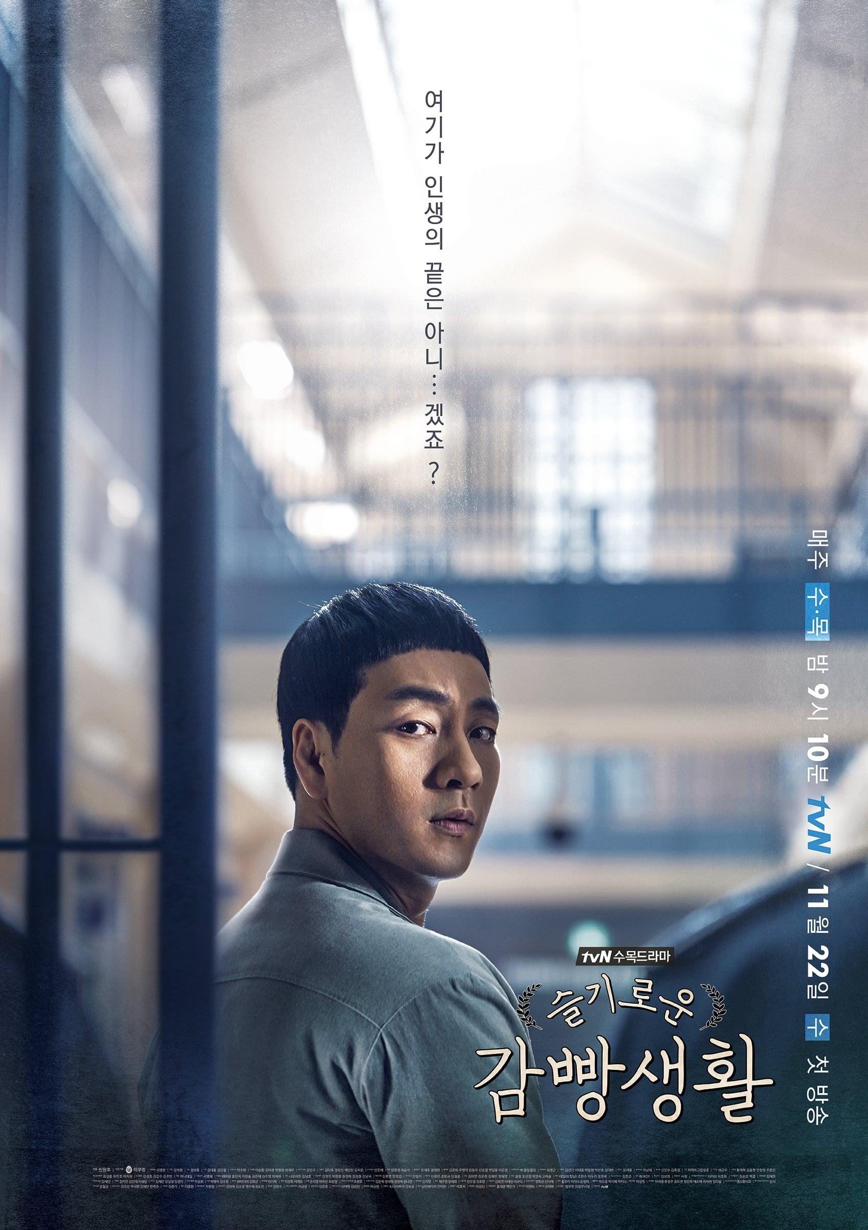 Nonton Drama Korea Prison Playbook (2017)