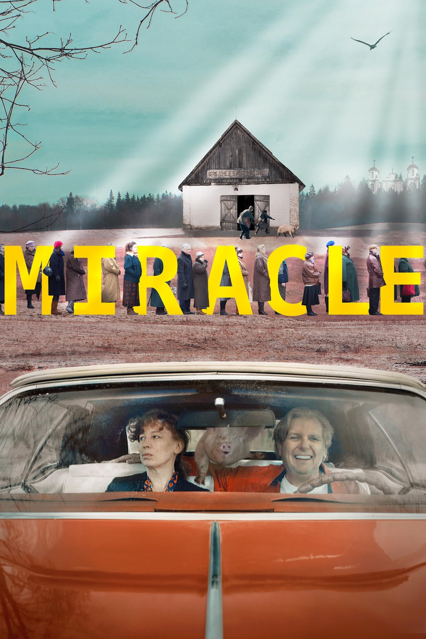Miracle on FREECABLE TV
