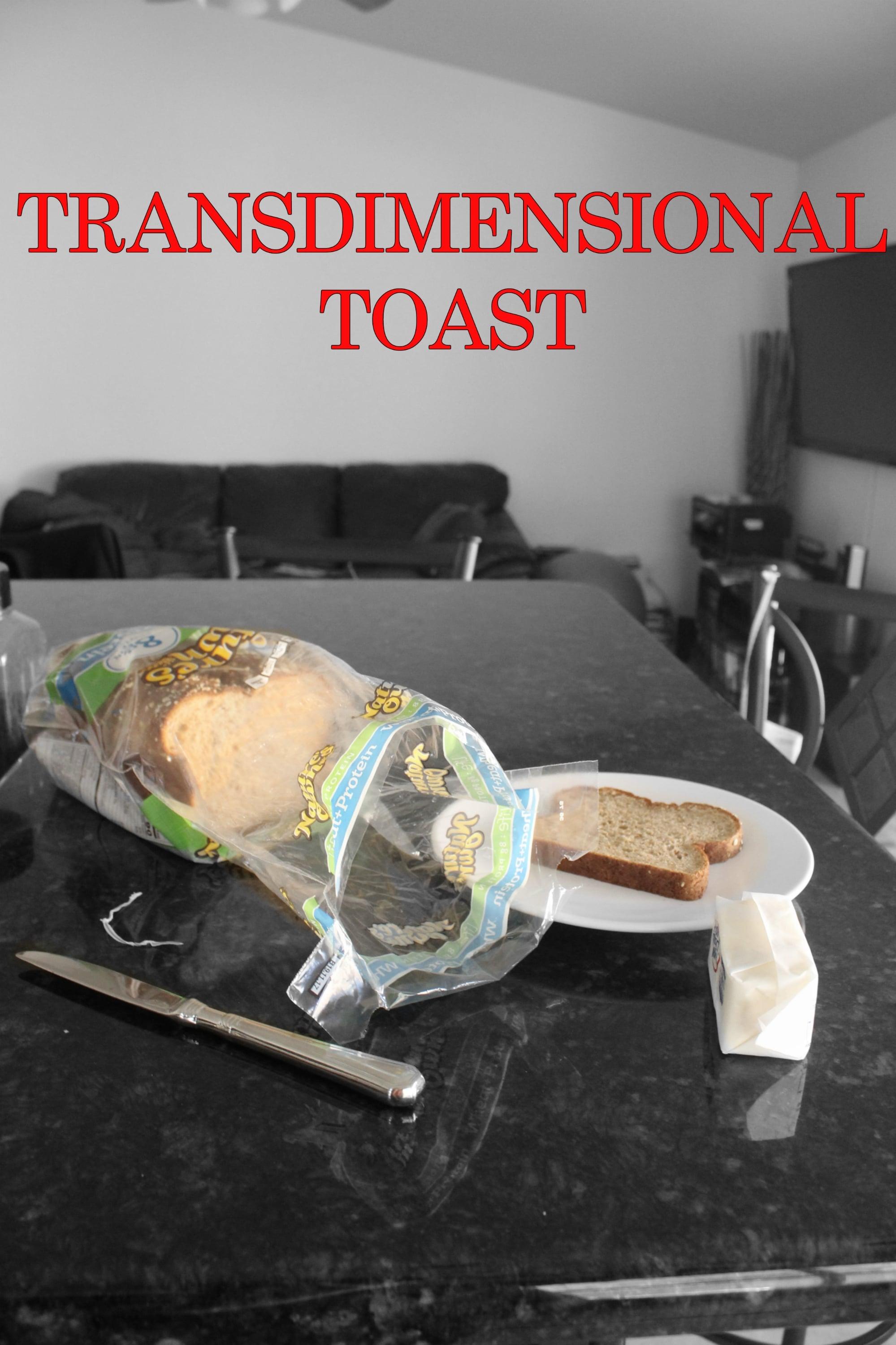 Ver Transdimensional Toast Online HD Español ()