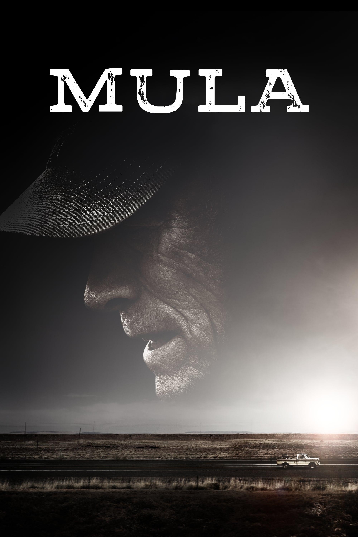 Póster Mula