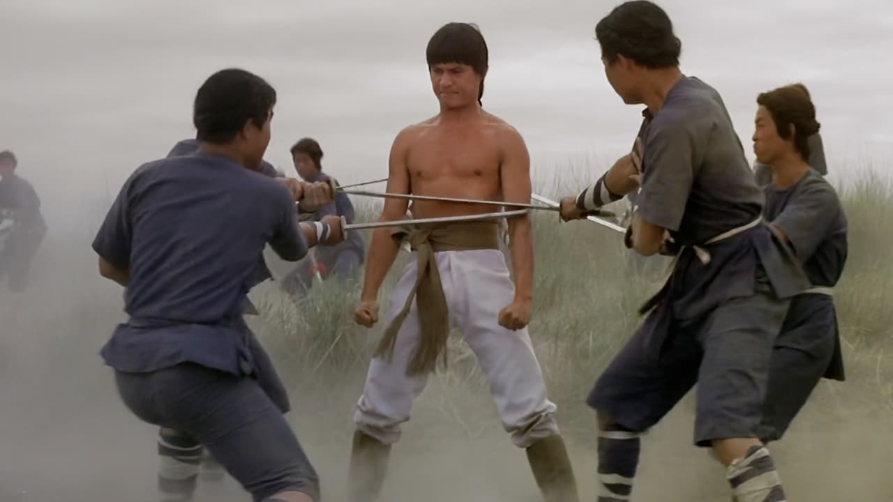 Invincible Kung Fu Brothers (1976)