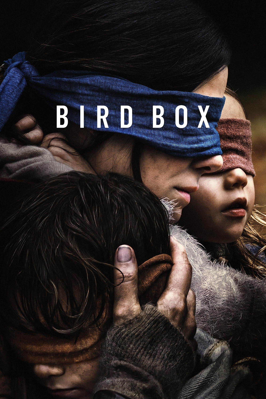 Poster and image movie Film Bird Box - Bird Box 2018