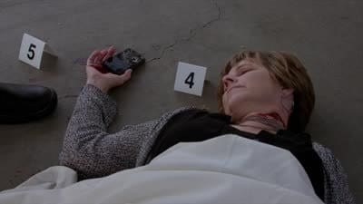 Criminal Minds Season 9 :Episode 3  Final Shot