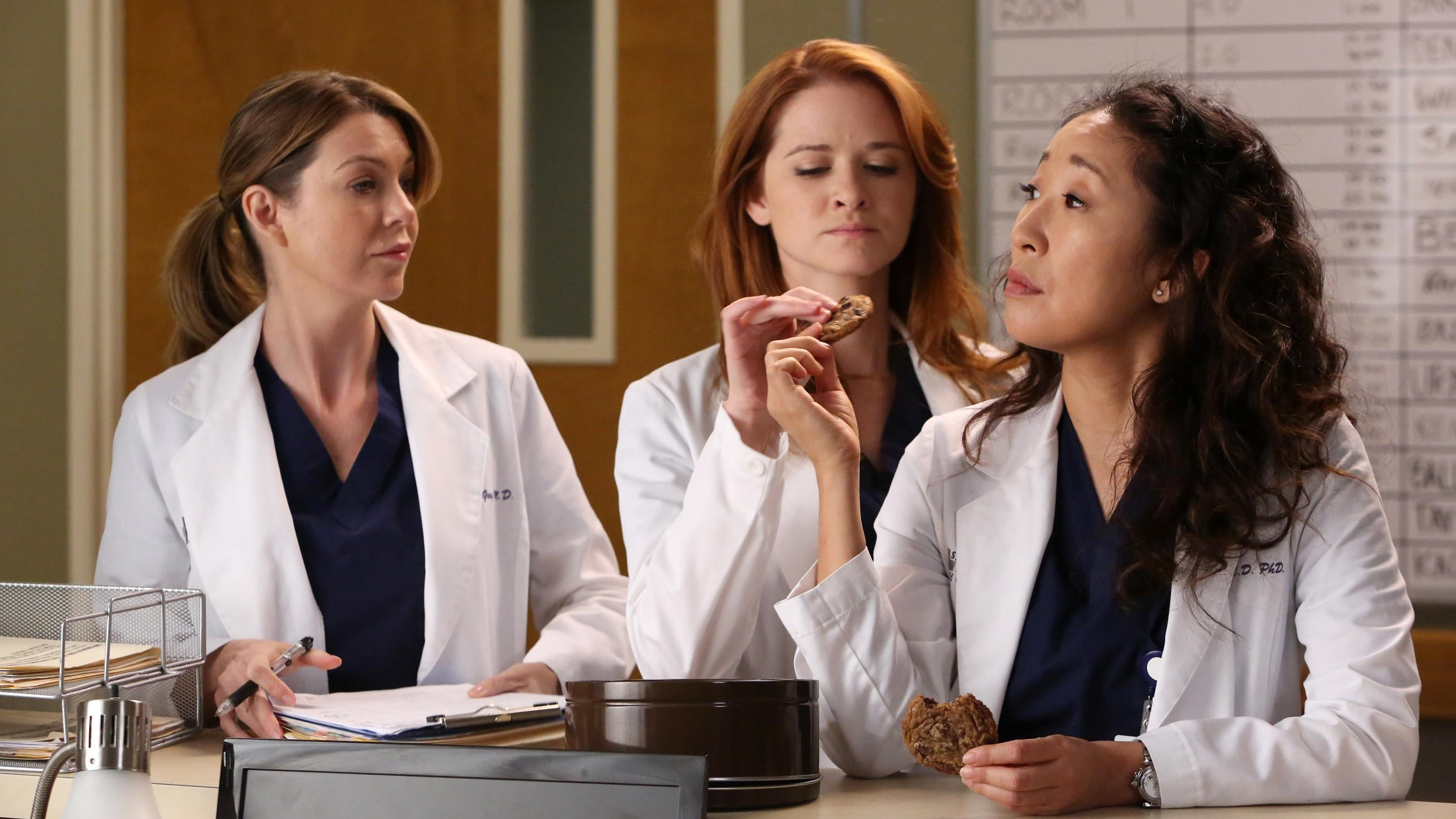 Grey's Anatomy - Season 9 Episode 11 : The End is the Beginning is the End