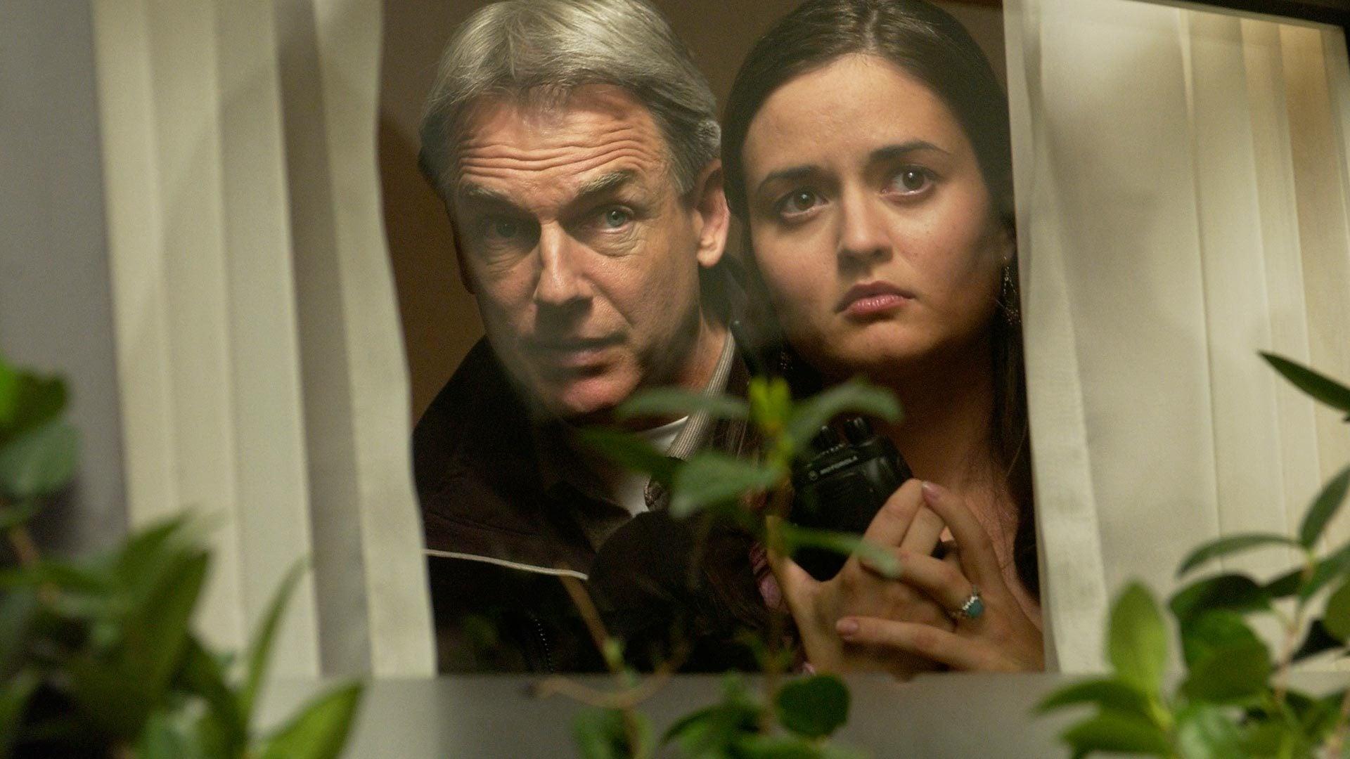 NCIS - Season 2 Episode 14 : Witness